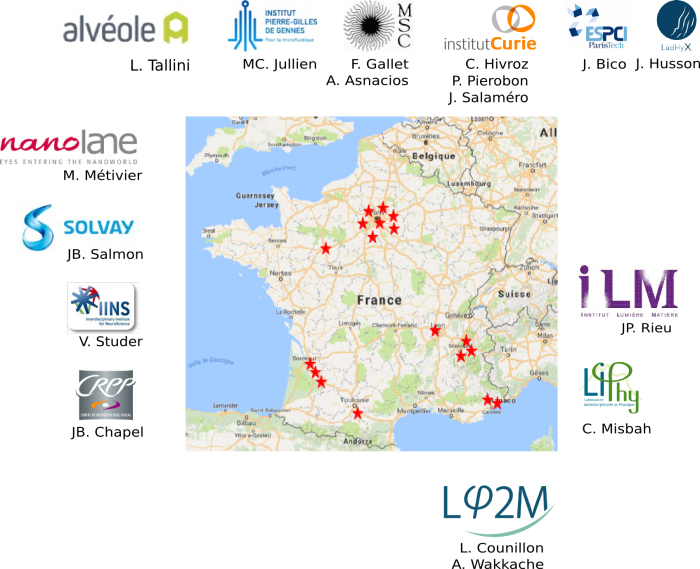France Adhesion Inflammation Lab