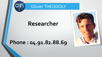 mail to olivier.theodoly@inserm.fr
