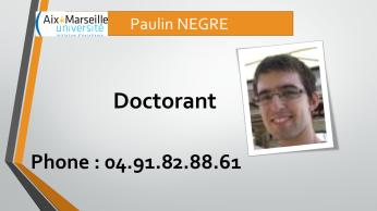 paulin.negre@inserm.fr